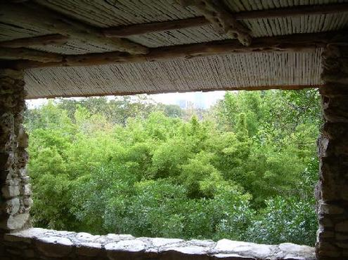 View of the bamboo tops from the tea house at the Taniguchi Japanese Garden, Zilker Botanical Garden, Austin, Texas - November 13, 2012